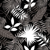 Seamless pattern tropical leaves Royalty Free Stock Images