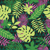 Seamless pattern tropical leaves Royalty Free Stock Image