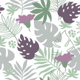 Seamless pattern tropical leaves Stock Photos