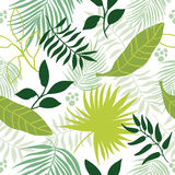 Seamless pattern tropical leaves Royalty Free Stock Photo