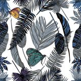 Seamless pattern with tropical leaves and butterfly. Vector illustration. Typography design elements for prints, cards, posters, products packaging, branding Stock Images