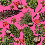 Seamless pattern with tropical leaves, coconut, watermelon and figs. Vector illustration Royalty Free Stock Images