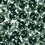 Seamless pattern with tropical leaves vector illustration