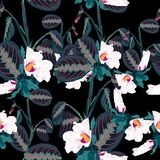 Seamless pattern with tropical  leaves and exotic white hibiscus flowers. Dark palm leaves on the black background. Vector seamless pattern. Tropical Royalty Free Stock Photo