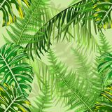 Seamless pattern with tropical leaves and ferns. Botanical seamless pattern with tropical leaves and ferns. Vector illustration Royalty Free Stock Photos