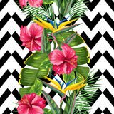 Seamless pattern with tropical leaves and flowers. Palms branches, bird of paradise flower, hibiscus Stock Photos