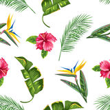 Seamless pattern with tropical leaves and flowers. Palms branches, bird of paradise flower, hibiscus Stock Images