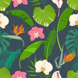 Seamless pattern with tropical leaves and flowers Stock Photos