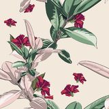 Seamless pattern with tropical leaves and hibiscus flowers. Green and pink ficus tree leaves on the bright background. Vector seamless pattern. Tropical Royalty Free Illustration