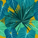 Seamless pattern of tropical leaves of palm tree. Vector background stock illustration