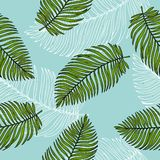 Seamless pattern with tropical leaves of palms. Colorful vector illustration in sketch style. royalty free illustration