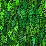 Seamless  pattern with tropical leaves. Green colours, fern, fresh summer wallpaper Royalty Free Stock Images