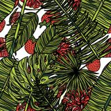 Seamless pattern with tropical leaves. Seamless pattern with tropical leaves, strawberries and fig. Vector illustration. Typography design elements for prints Royalty Free Stock Image