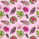 Seamless pattern. Tropical leaves watercolor background.. Tropical leaves watercolor background. Flower illustrations. Seamless pattern. Tropical leaves vector illustration