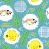 Seamless pattern with tropical marine fish. watercolor background. Seamless pattern with tropical marine fish and circle. watercolor  abstract background Royalty Free Stock Images