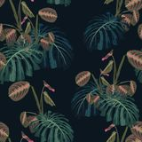 Seamless pattern with tropical monstera leaves and exotic plants. Dark and bright palm leaves on the black background. Vector seamless pattern. Tropical Royalty Free Stock Photos