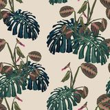 Seamless pattern with tropical monstera leaves and exotic plants. Dark and bright palm leaves on the light background. Vector seamless pattern. Tropical stock illustration