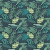 Seamless pattern of tropical palm and Calathea prayer plant leaves on dark background royalty free illustration