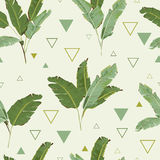 Seamless Pattern. Tropical Palm Leaves Background. Banana Leaves Stock Images
