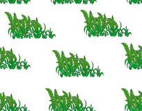 Seamless Pattern. Tropical Palm Leaves Background. Banana Leaves. Vector Background. Exotic Flowers Texture. Floral. Wallpaper. on white Background Stock Photography