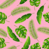 Seamless pattern with tropical palm leaves. Exotic tropical plants. Illustration of jungle nature vector illustration