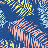 Seamless pattern of Tropical palm leaves. Vector illustration. Flat style. Seamless pattern of Tropical palm leaves. Vector illustration. Flat design style Royalty Free Stock Photo
