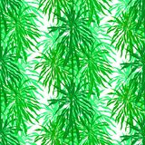 Seamless pattern with tropical palm leaves Royalty Free Stock Image