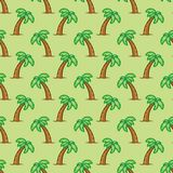 Seamless pattern tropical palm tree on green background. Exotic palm tree pattern background. Stock Images