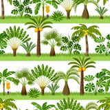 Seamless pattern with tropical palm trees. Exotic tropical plants Illustration of jungle nature stock illustration