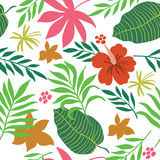Seamless pattern with tropical plants Royalty Free Stock Photo
