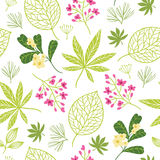 Seamless pattern with tropical plants Royalty Free Stock Photos