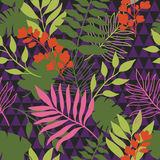 Seamless pattern with tropical plants Stock Image