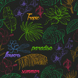 Seamless pattern with tropical plants and flowers on dark background Royalty Free Stock Photography