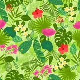 Seamless pattern with tropical plants, leaves and Stock Images