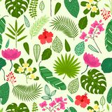 Seamless pattern with tropical plants, leaves and Stock Photography