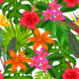 Seamless pattern with tropical plants, leaves and flowers. Royalty Free Stock Images