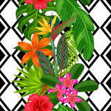Seamless pattern with tropical plants, leaves and flowers. Background made without clipping mask. Easy to use for Royalty Free Stock Photography