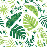 Seamless pattern with tropical plants Royalty Free Stock Image