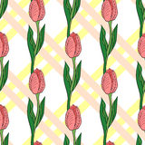 Seamless Pattern With Tulip 2 Royalty Free Stock Photo