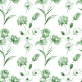 Seamless pattern with Tulip and Poppy flowers. Watercolor painting Stock Photography