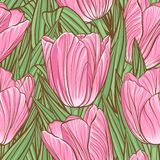 Seamless pattern with tulips Stock Images