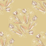 Seamless pattern with tulips flowers-02 Royalty Free Stock Image