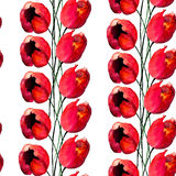 Seamless pattern with Tulips flowers Stock Images