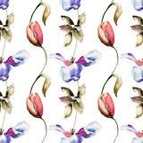 Seamless pattern with Tulips flowers. Watercolor illustration Royalty Free Stock Images