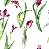 Seamless pattern with Tulips flowers. Watercolor painting Stock Photo