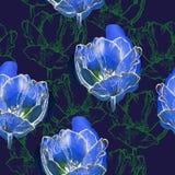 Seamless pattern tulips Stock Photos