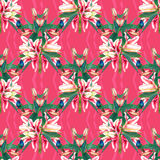 Seamless pattern tulips and hummingbirds Stock Photography