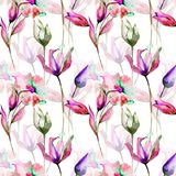 Seamless pattern with Tulips and Lily flowers. Watercolor illustration Royalty Free Stock Photos
