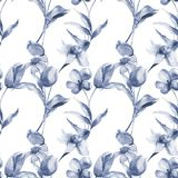 Seamless pattern with Tulips and Narcissus flowers Stock Image