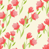 Seamless pattern with tulips Stock Photos